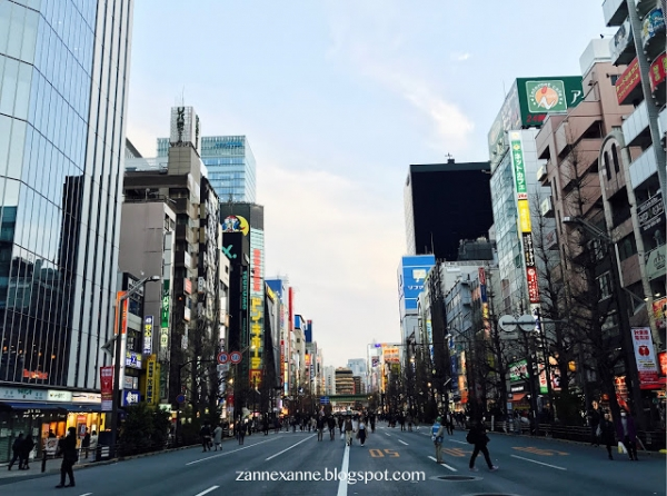 Things To Buy in Japan's Drugstore   Zanne Xanne's Travel Guide