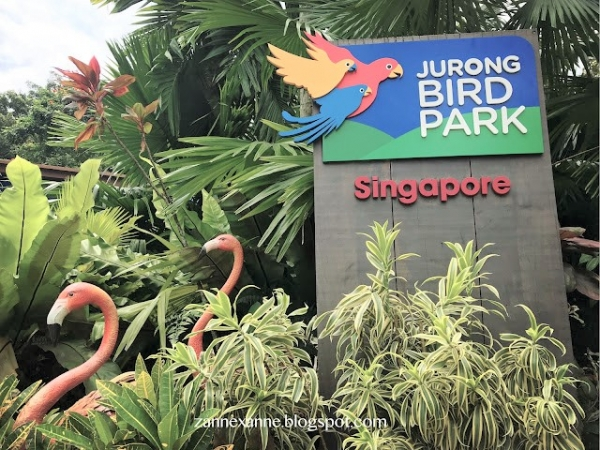Jurong Bird Park Singapore | Asia Largest Bird Paradise | Zanne Xanne's Travel Guide