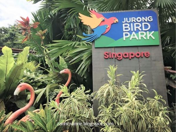 Jurong Bird Park Singapore | Asia Largest Bird Paradise | Zanne Xanne's Travel Guide