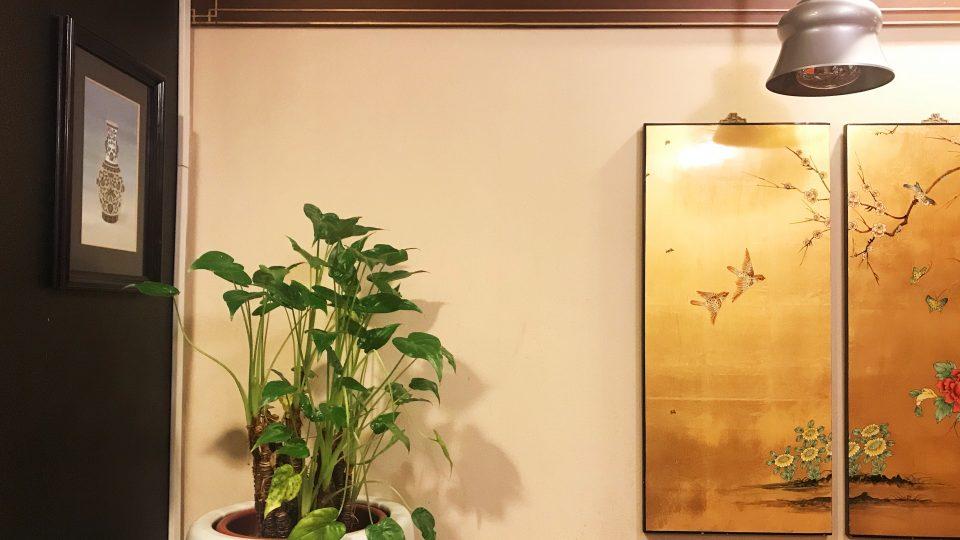 Lotus Vegetarian Restaurant Review By Zanne Xanne
