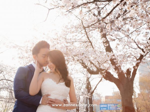 Top 5 Korea Pre Wedding Photo Shoot Location | By Zanne Xanne