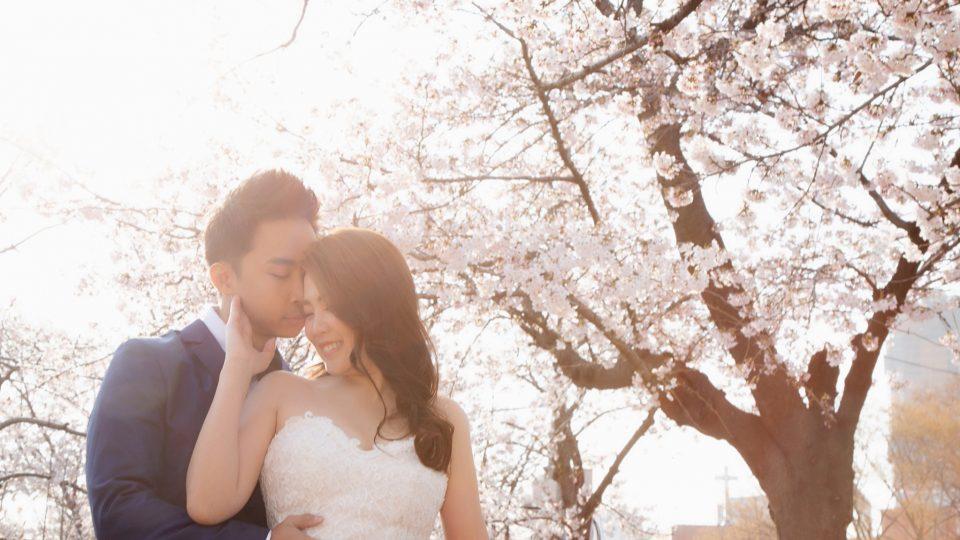 Top 5 Korea Pre Wedding Photo Shoot Location | By Zanne Xanne
