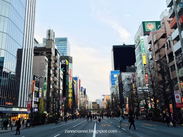 Things To Buy in Japan's Drugstore | Zanne Xanne's Travel Guide