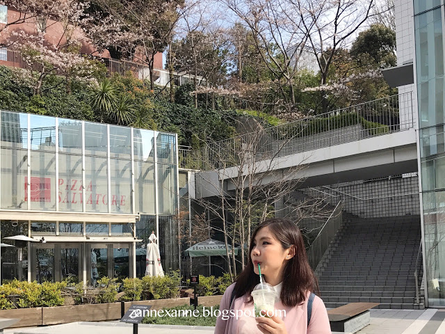 Tokyo Itinerary (Part 3) | Central Tokyo | Zanne Xanne's Travel Guide