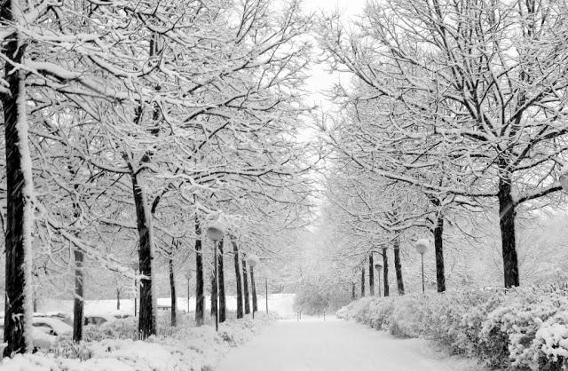 Yangpyeong | South Korea Day Trip In Winter | Zanne Xanne's Travel Guide