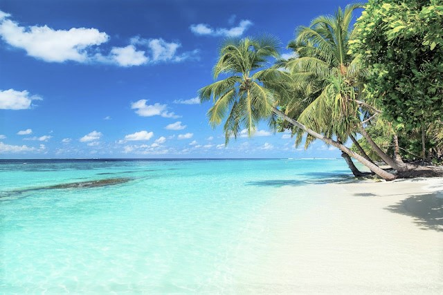 30 Things You Should Know Before Visit Maldives | Zanne Xanne's Travel Guide