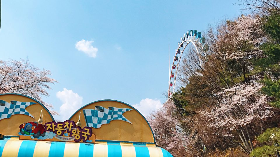 Everland Theme Park | Zanne Xanne's Travel Guide