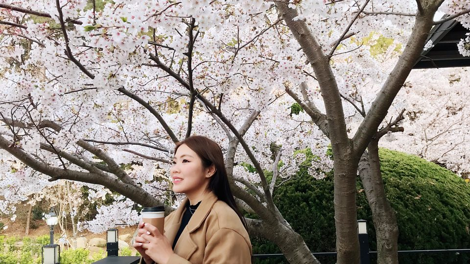 Busan To Gapyeong Travel Guide | Zanne Xanne's Itinerary