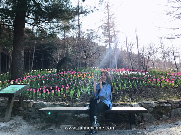 The Garden Of Morning Calm | Zanne Xanne's Travel Guide