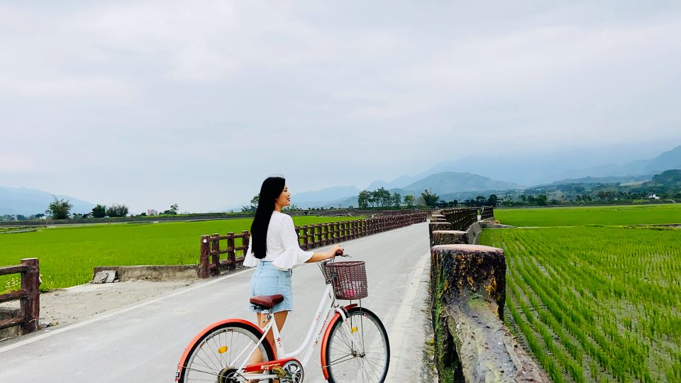 Brown Avenue | The Picturesque Paddy Field of Chishang | Zanne Xanne's Travel Guide